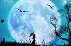 Full-Moon-837932