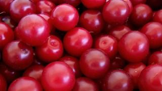 Cherry_plums