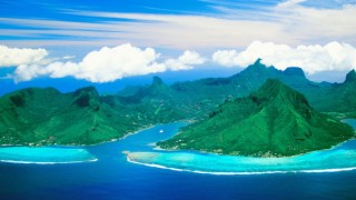coconut-crabs-christmas-island