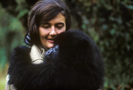 Dian_Fossey1
