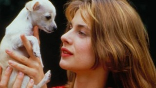 Kinski and Pooch