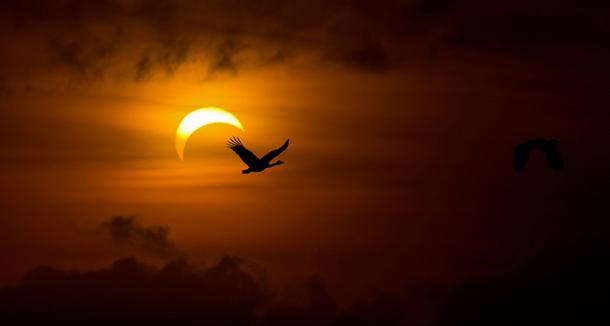 Λίλιαν Σίμου έκλειψη Ηλίου astrolife