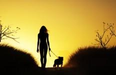 άνθρωπος και ζώα Λίλιαν Σίμου astrolife